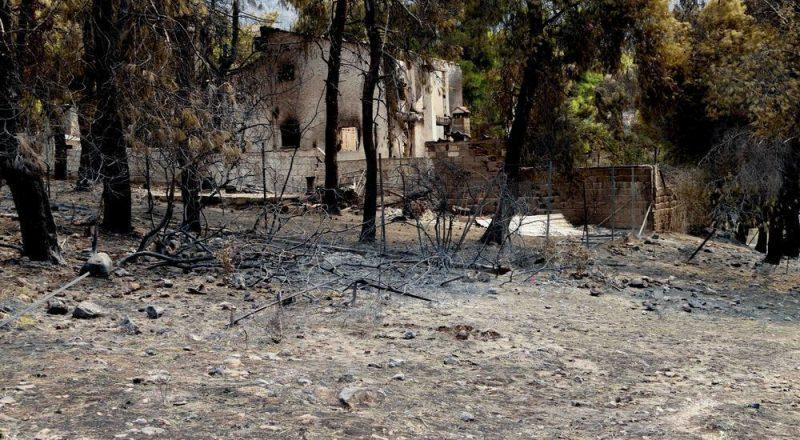Φωτογραφικό οδοιπορικό του ΕΕΑ στην άλλη φωτιά, στη Δ. Αττική