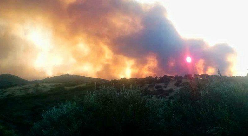 Προσοχή! Σήμερα η πιο επικίνδυνη μέρα για πυρκαγιές – Φωτιά το πρωί στο Σοφικό