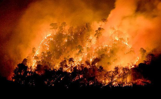 «Το ΕΕΑ δίπλα στους πληγέντες των φονικών πυρκαγιών»
