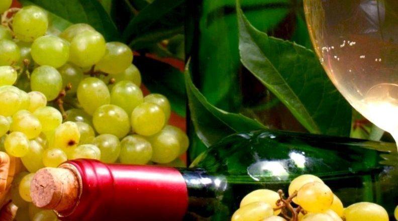 4,8 εκατ. ευρώ για προγράμματα προώθησης του ελληνικού κρασιού