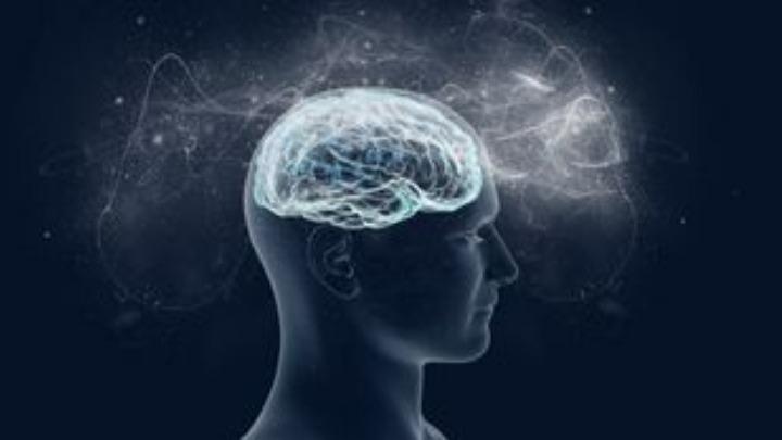 Αποκωδικοποιητής του εγκεφάλου «διαβάζει» το διάλογο σε πραγματικό χρόνο