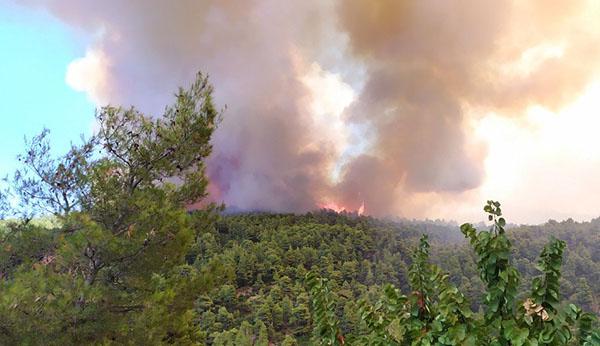 Πύρινη λαίλαπα στην Εύβοια – Αδιάκοπη μάχη με τις φλόγες