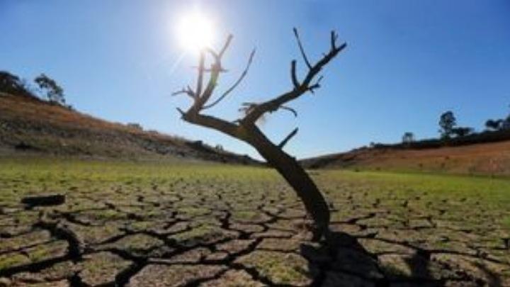 Διατροφή και κλίμα, η ανθρωπότητα βρίσκεται μπροστά σε ένα καίριο δίλημμα