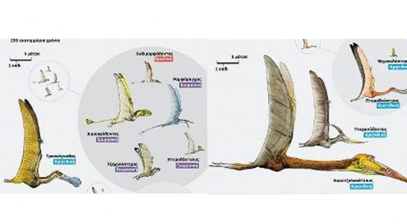 Η ζωή παλιά. Πτερόσαυροι: Ιπτάμενα τέρατα του Μεσοζωικού αιώνα