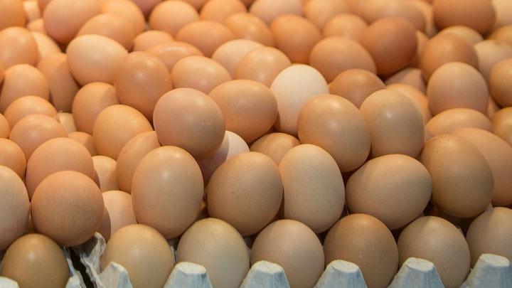 Διεπαγγελματική Οργάνωση Αυγού: Θα εργαστούμε όλοι μαζί για να πάμε τον κλάδο του αυγού στη θέση που αξίζει