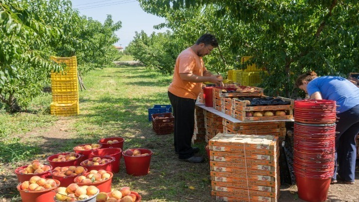 Νέα  εθνική στρατηγική στα αγροδιατροφικά, οι 7 προτεραιότητες