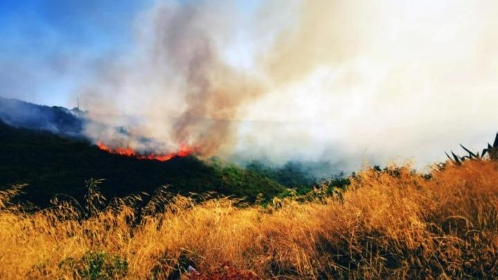 Σαράντα δύο δασικές πυρκαγιές την Παρασκευή σε όλη την Ελλάδα